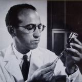 Jonas Salk Quotes