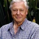 David Attenborough Quotes
